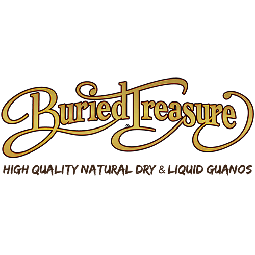 Buried Treasure logo