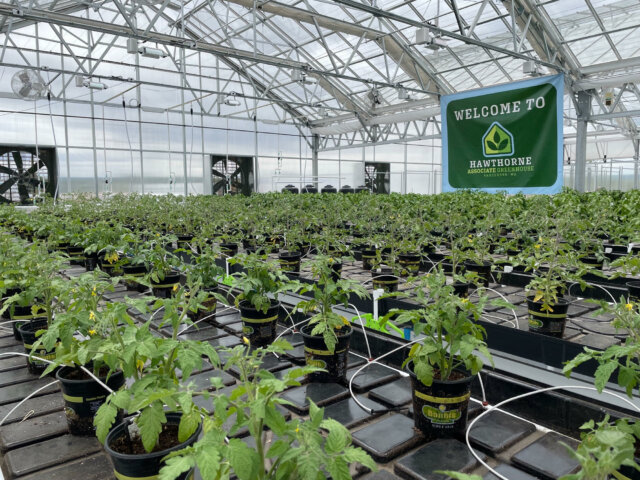 Hawthorne Gardening Company Opens Doors To New Greenhouse To Fight Community Hunger